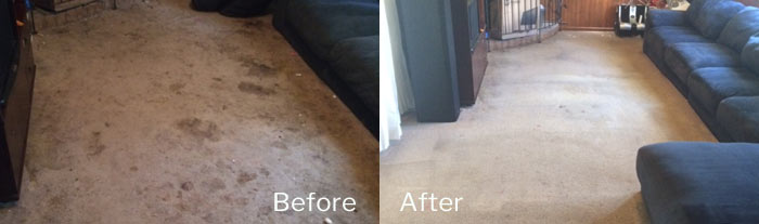 Carpet Cleaning Oaks Estate
