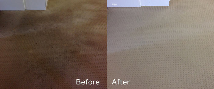Carpet Cleaning Weston