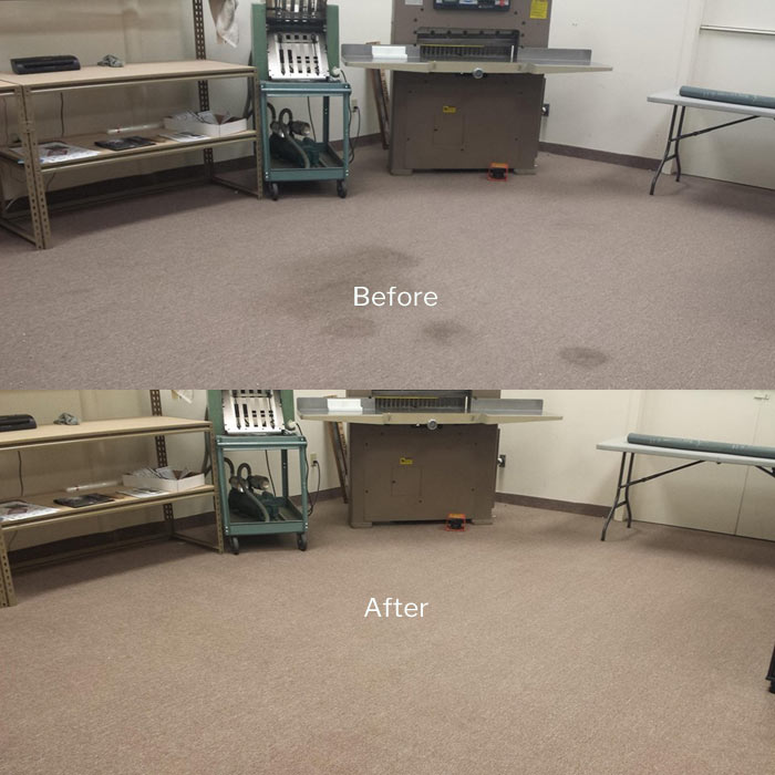 Professional Carpet Cleaning  Springrange
