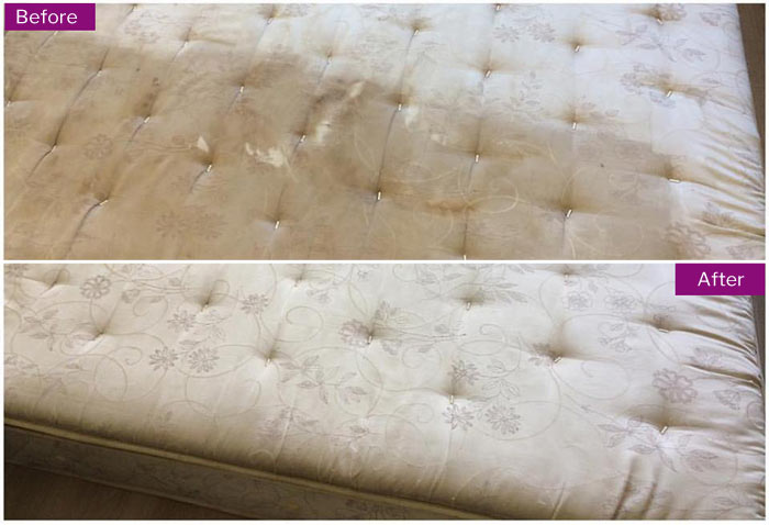 Expert Mattress Cleaning  Springrange