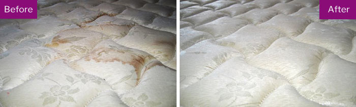 Professional Mattress Cleaning  Rivett